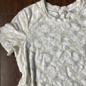 Wilfred—Aritzia Sheer lace top